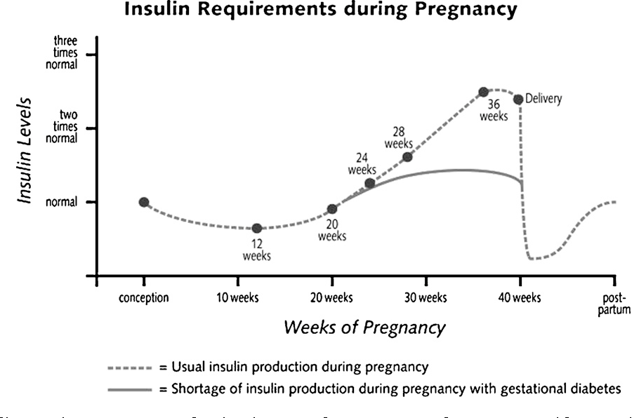 insulin requirements during pregnancy