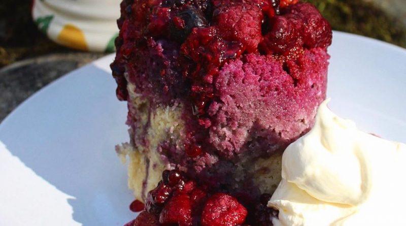 low carb summer pudding mug cake