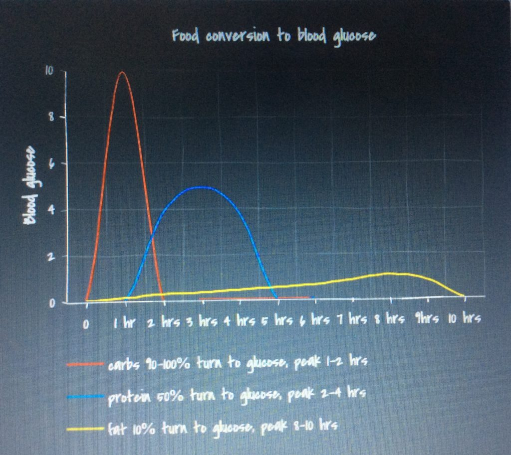 food conversion to blood glucose