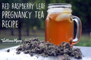 Red-Raspberry-Leaf-Pregnancy-Tea-Recipe