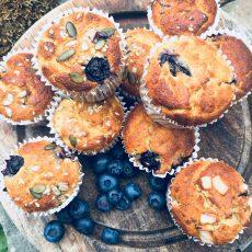 blueberry breakfast muffins nut free version