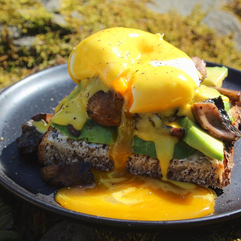 Avocado eggs benedict with mushrooms
