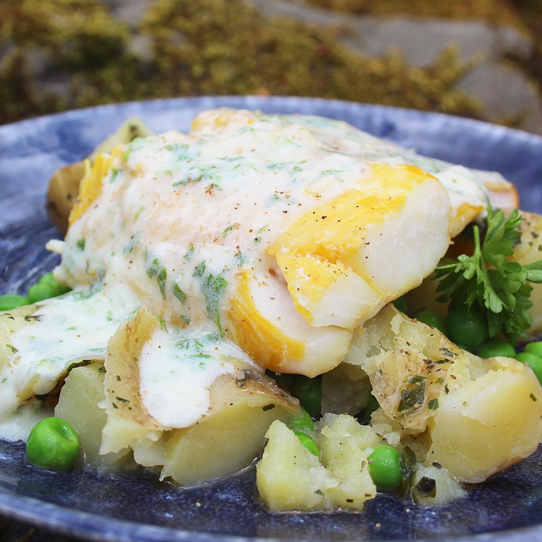 smoked haddock in parsley sauce